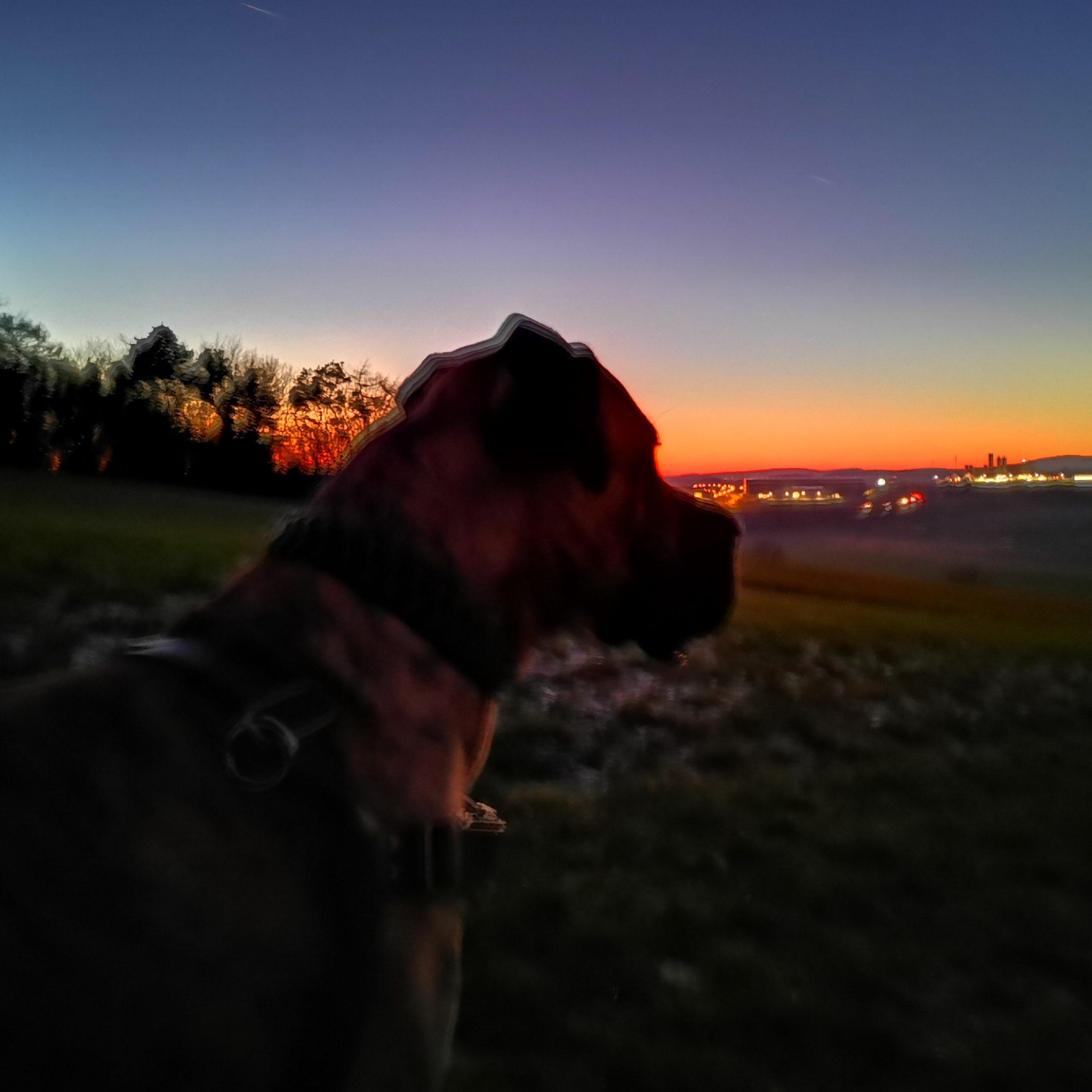 Odin Sonnenuntergang